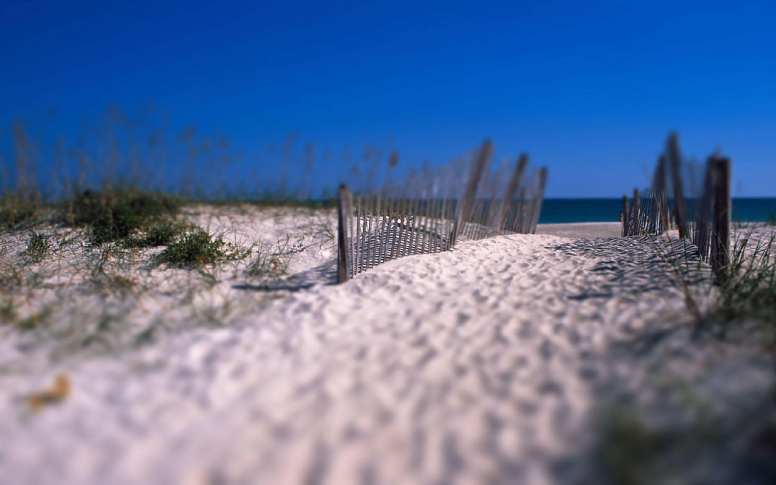 Caminito de Playa