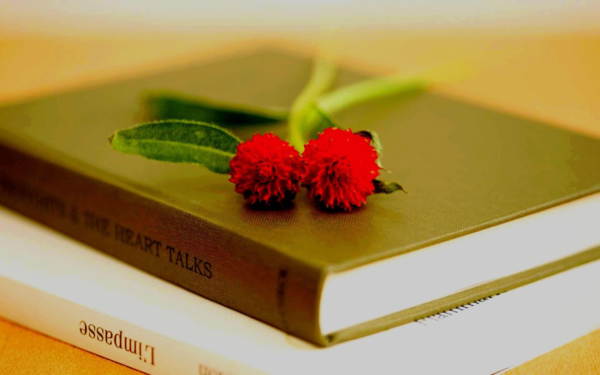 Flores y Libros. Wallpapers Románticos