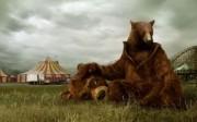 Oso Triste en el Circo