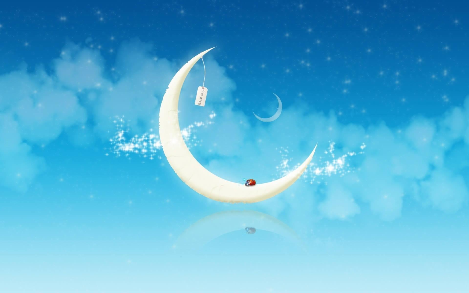 Mariquita sobre la luna