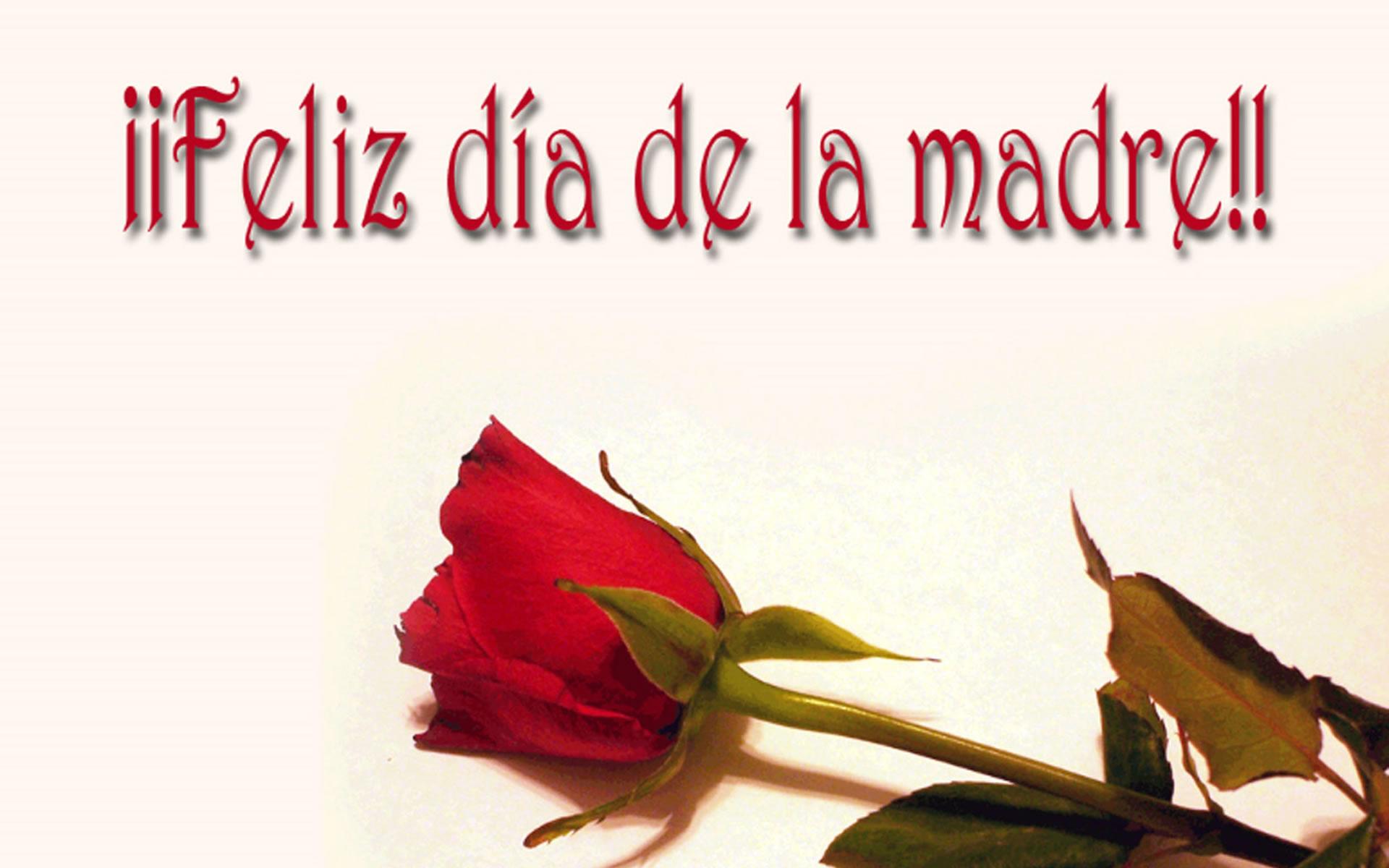 Imagen Feliz Día de la Madre.