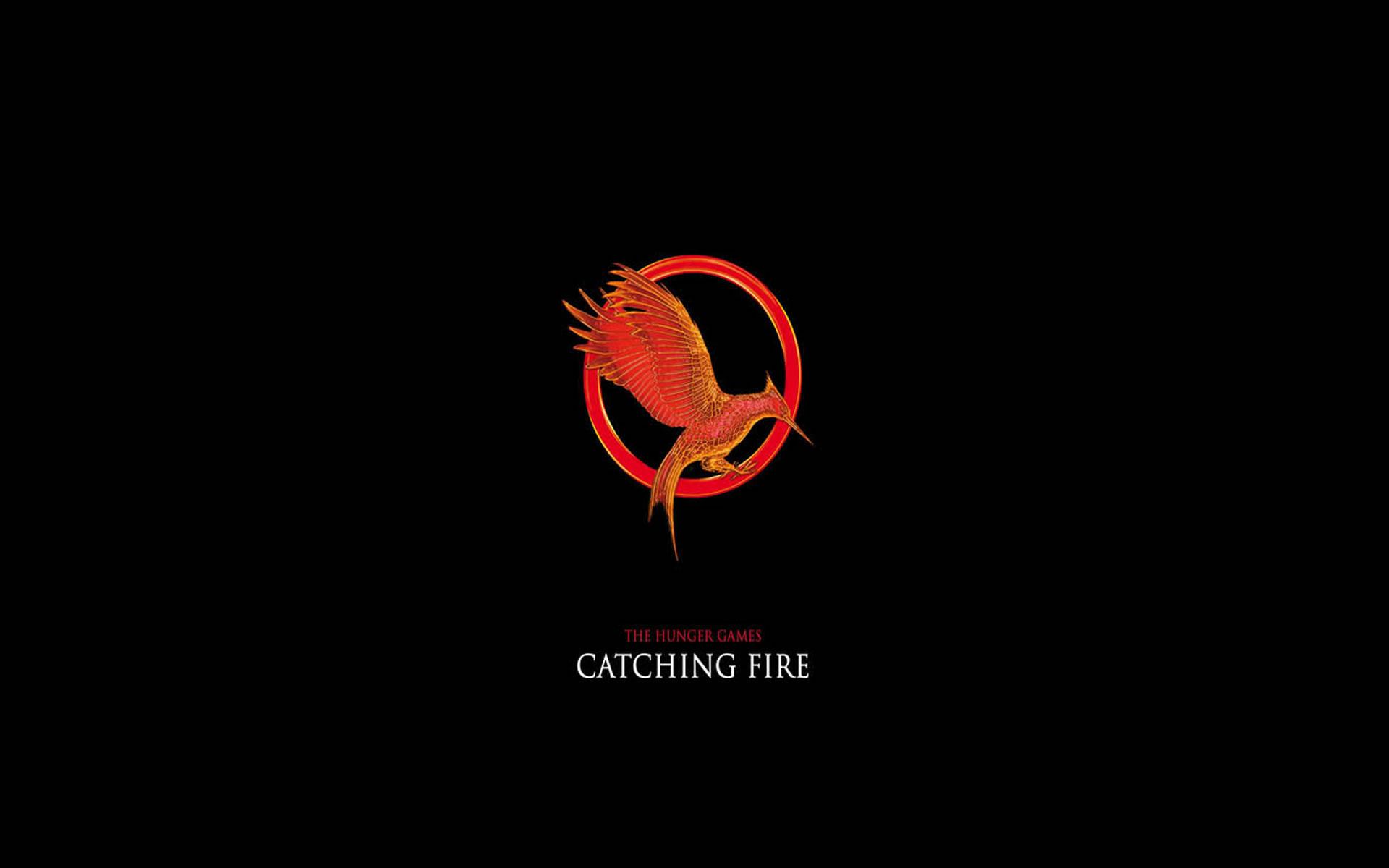 Los Juegos del Hambre Catching Fire.