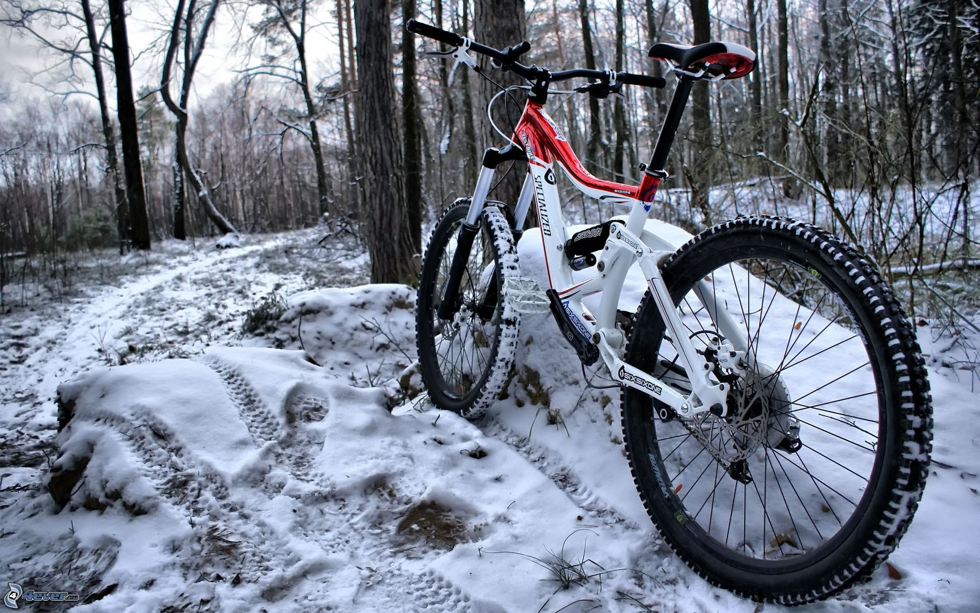 Bicicleta Mountain Bike en la Nieve