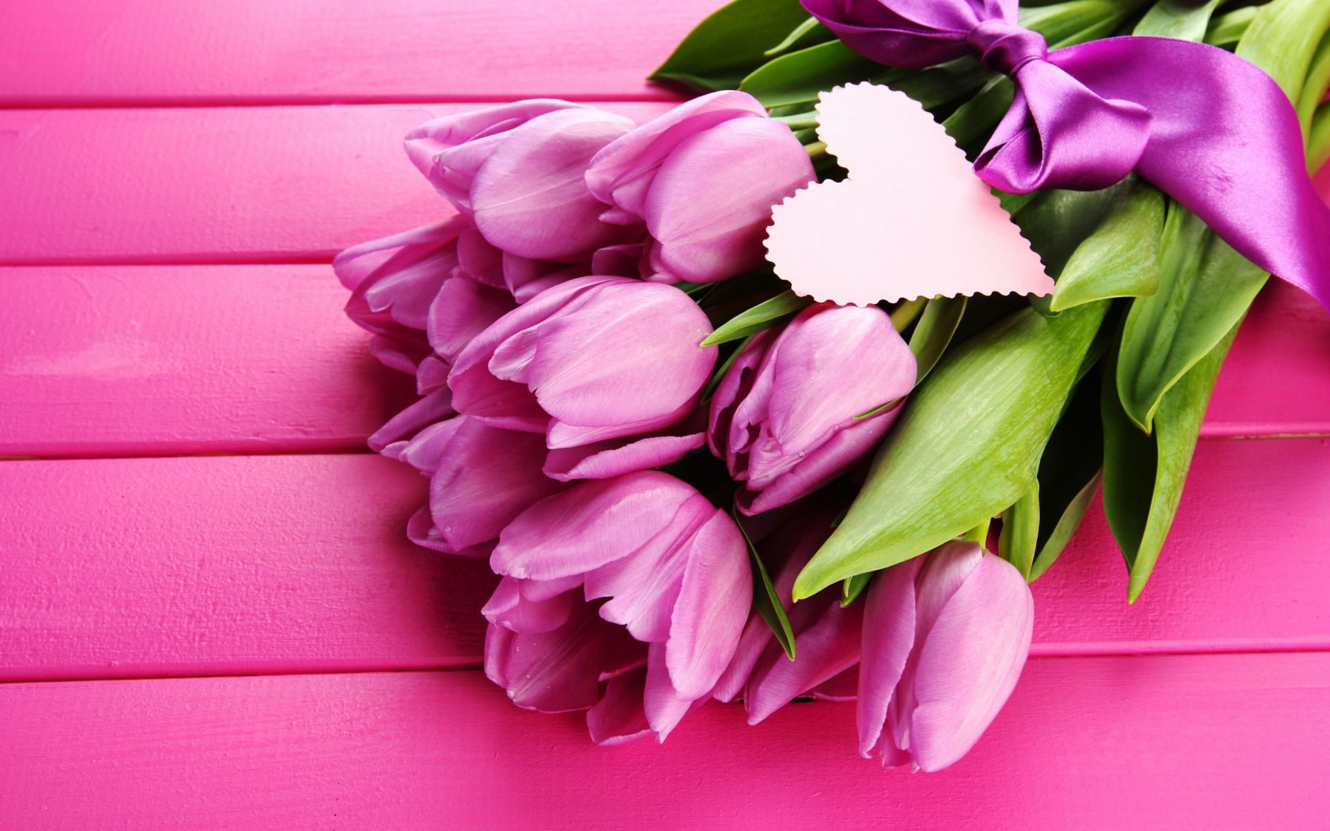 Fondo Tulipanes Rosas.