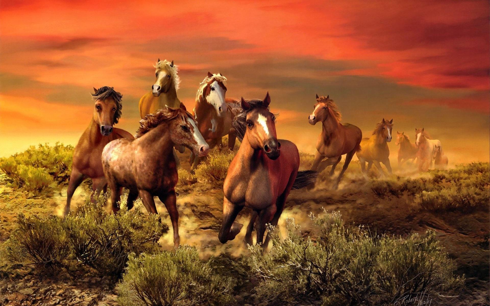 Caballos Cabalgando hacia Pantalla