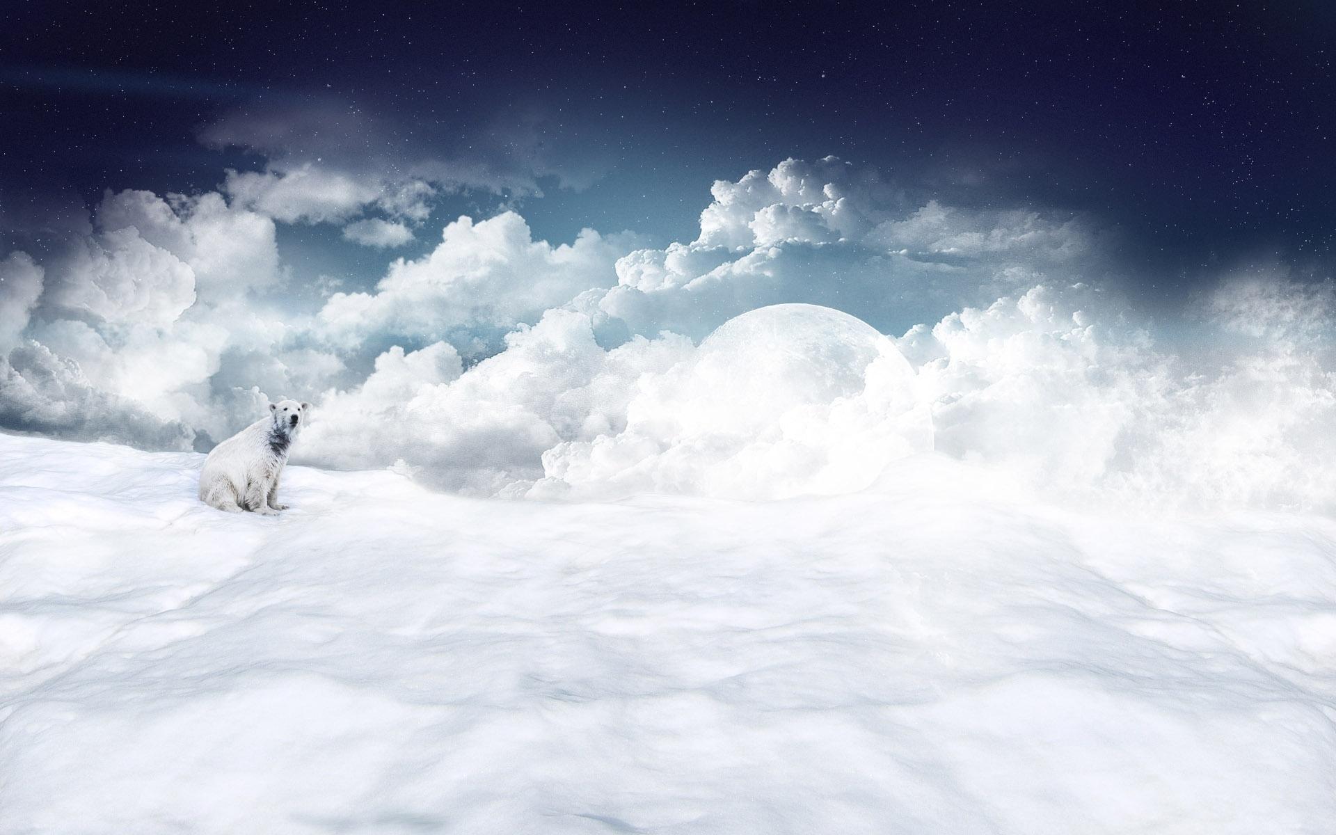 Oso Polar en las nubes