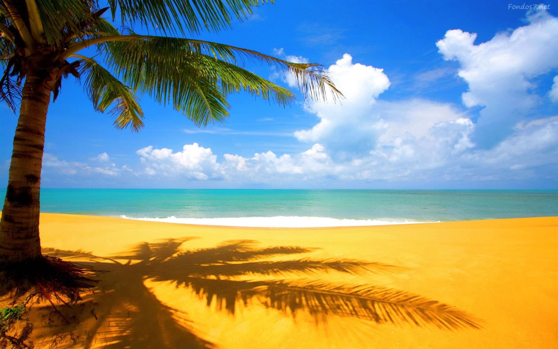 Playa para Escritorio