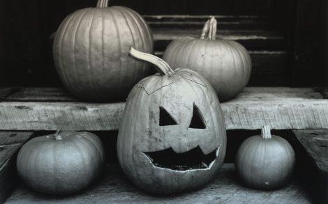 Calabazas en Halloween