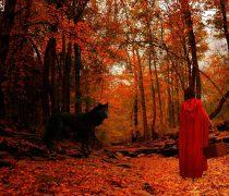 Caperucita Roja y el Lobo.