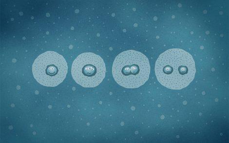 Dibujo División de las Células.