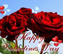 Fondo San Valentín 2015