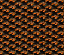 Fondo Textura Halloween 2014