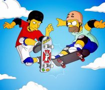 Homer Simpson VS Tony Hawk