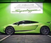 Lamborghini Superleggera Verde