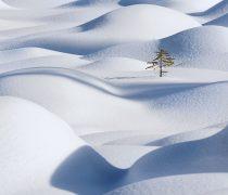 Montículos de Nieve