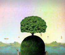 Mundos en mi cabeza