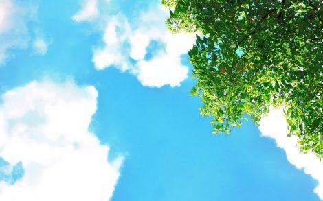 Paisaje de un día soleado