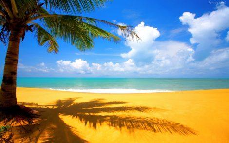 Playa para Escritorio.