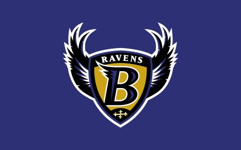 Super Bowl 2013. Ravens Baltimore