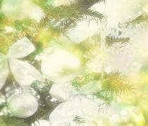 Textura de Navidad para Móvil