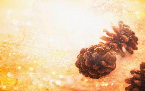 Wallpaper Textura de Navidad