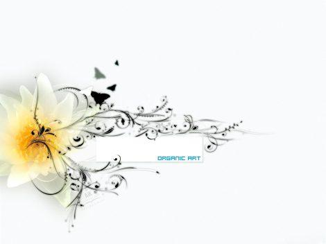 Wallpaper Organic Art
