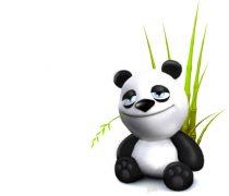 Wallpaper Oso Panda